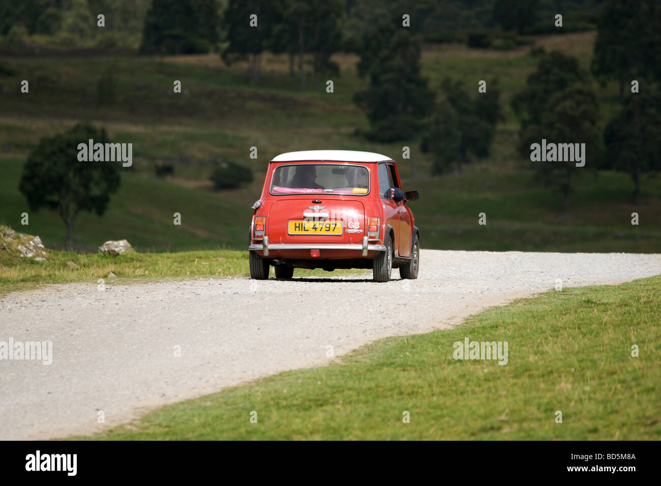 Read and white classic mini cooper car in the Highland Wildlife Park Scotland - Stock Image