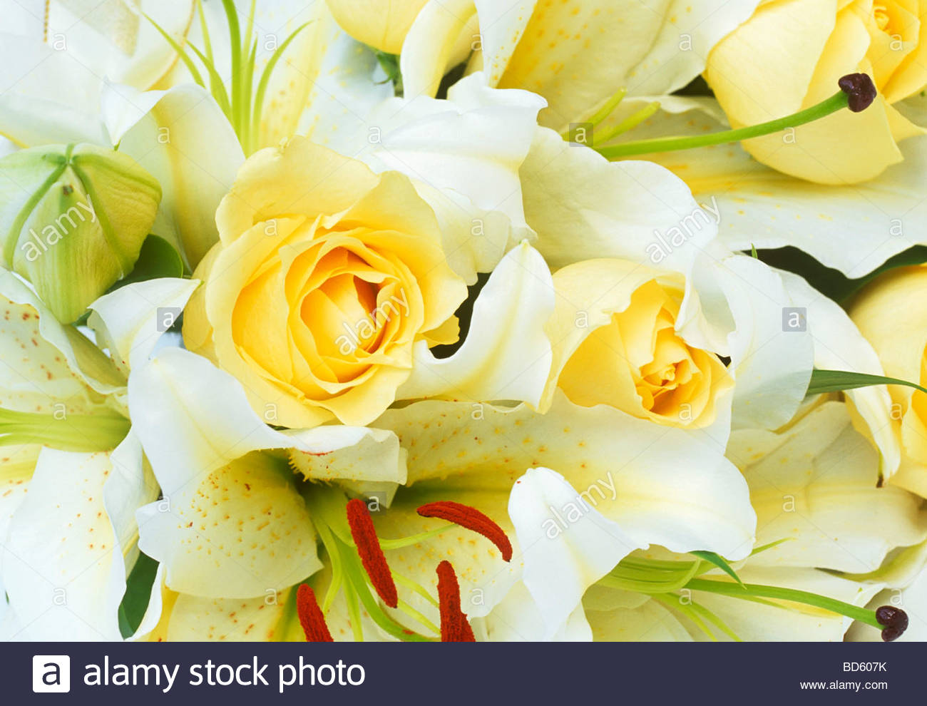A wedding bouquet of yellow roses and white lilies Stock Photo ...