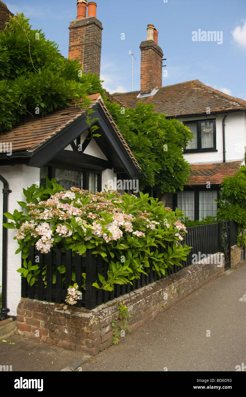 White Walled Country Cottage Wonersh Surrey England - Stock Image