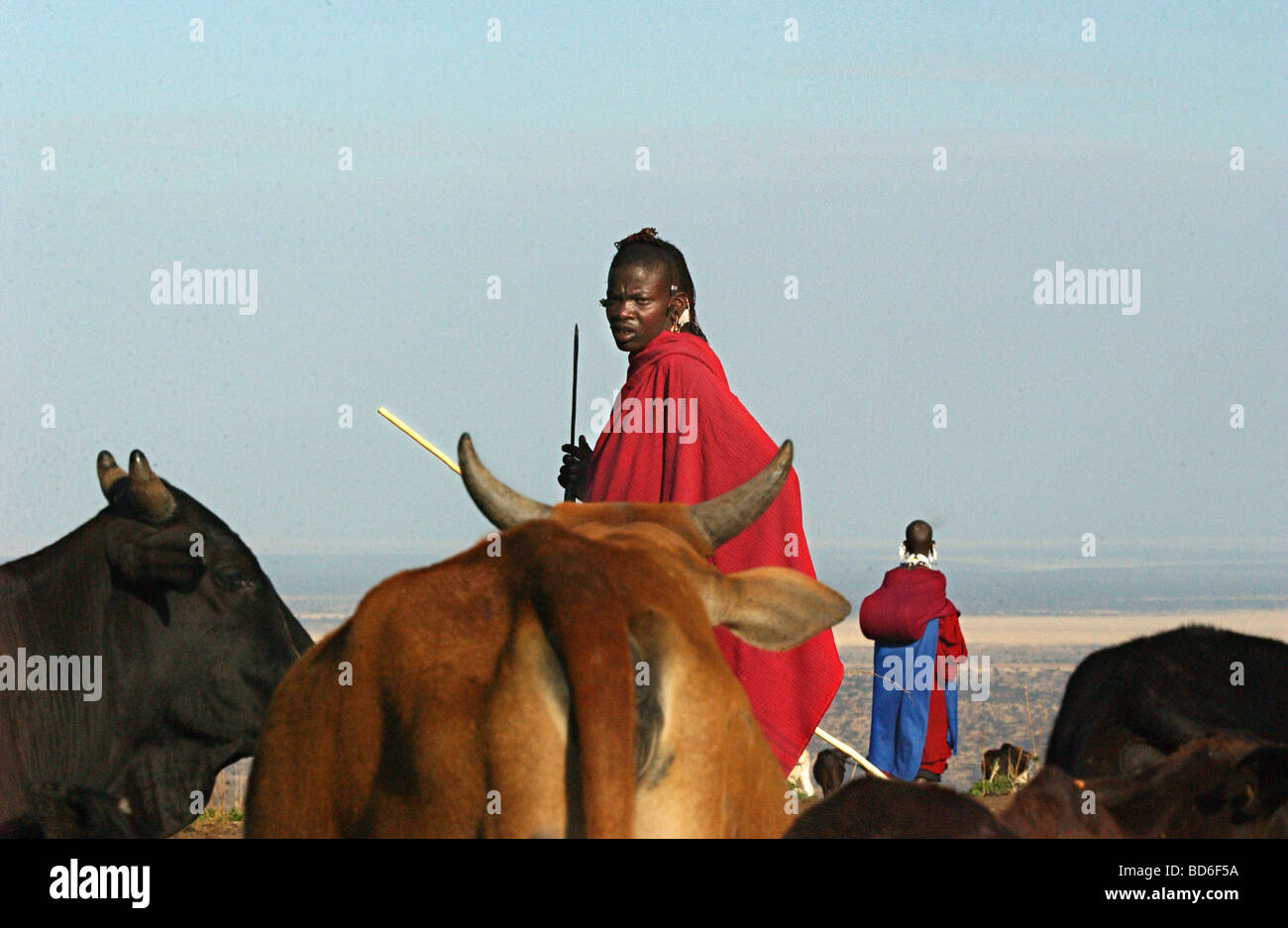 Masai pastoralists collect water in Endulen in Ngornogoro District in Tanzania September 30 2003 The Masai were - Stock Image