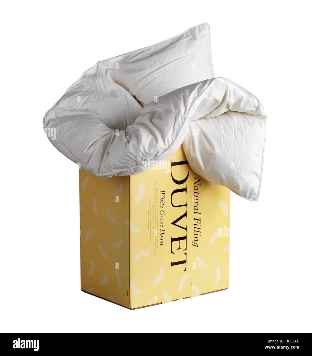 Duvet in Box - Stock Image