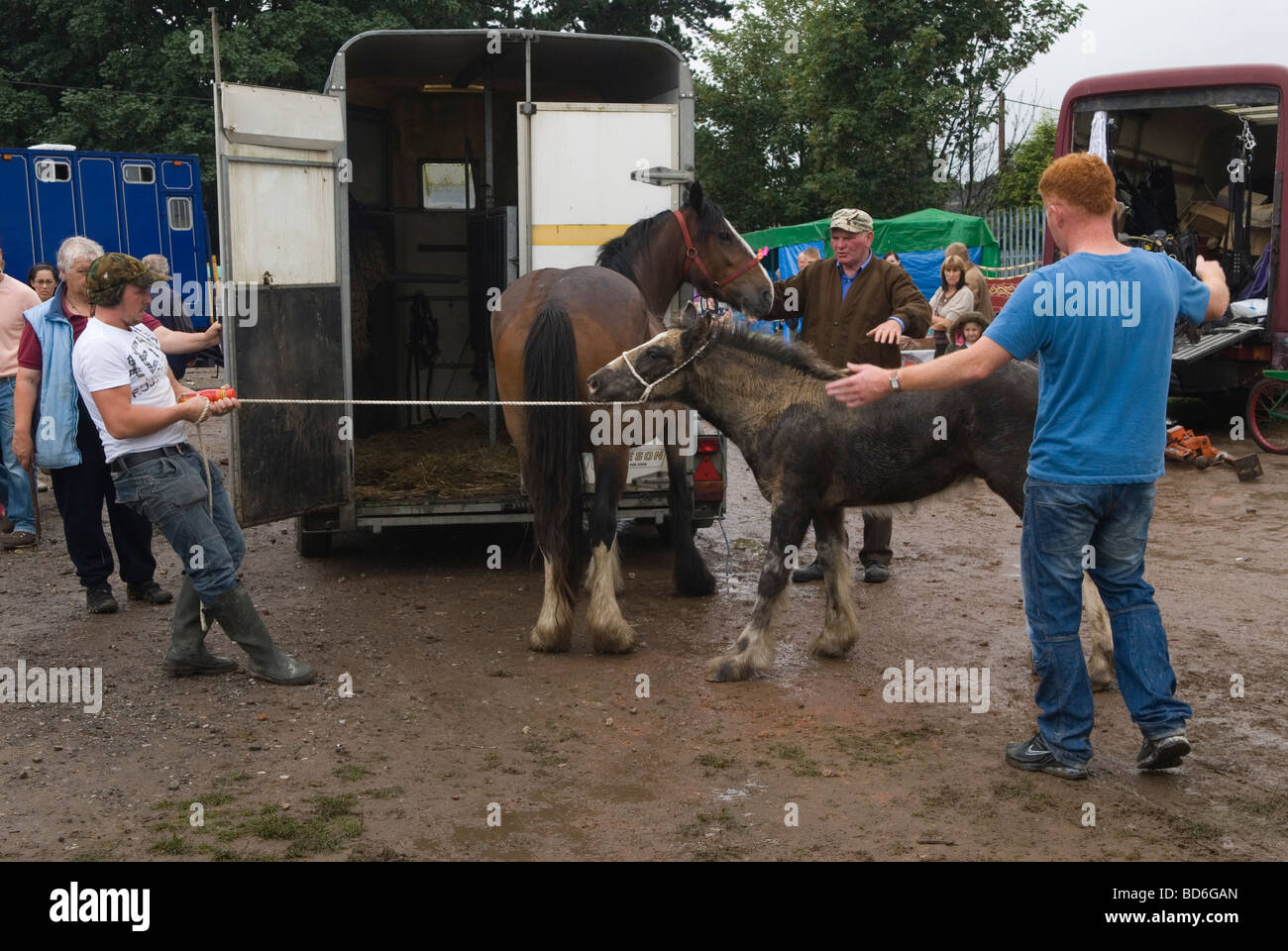 273784a5d5262 Brigg Horse Fair Stock Photos   Brigg Horse Fair Stock Images - Alamy