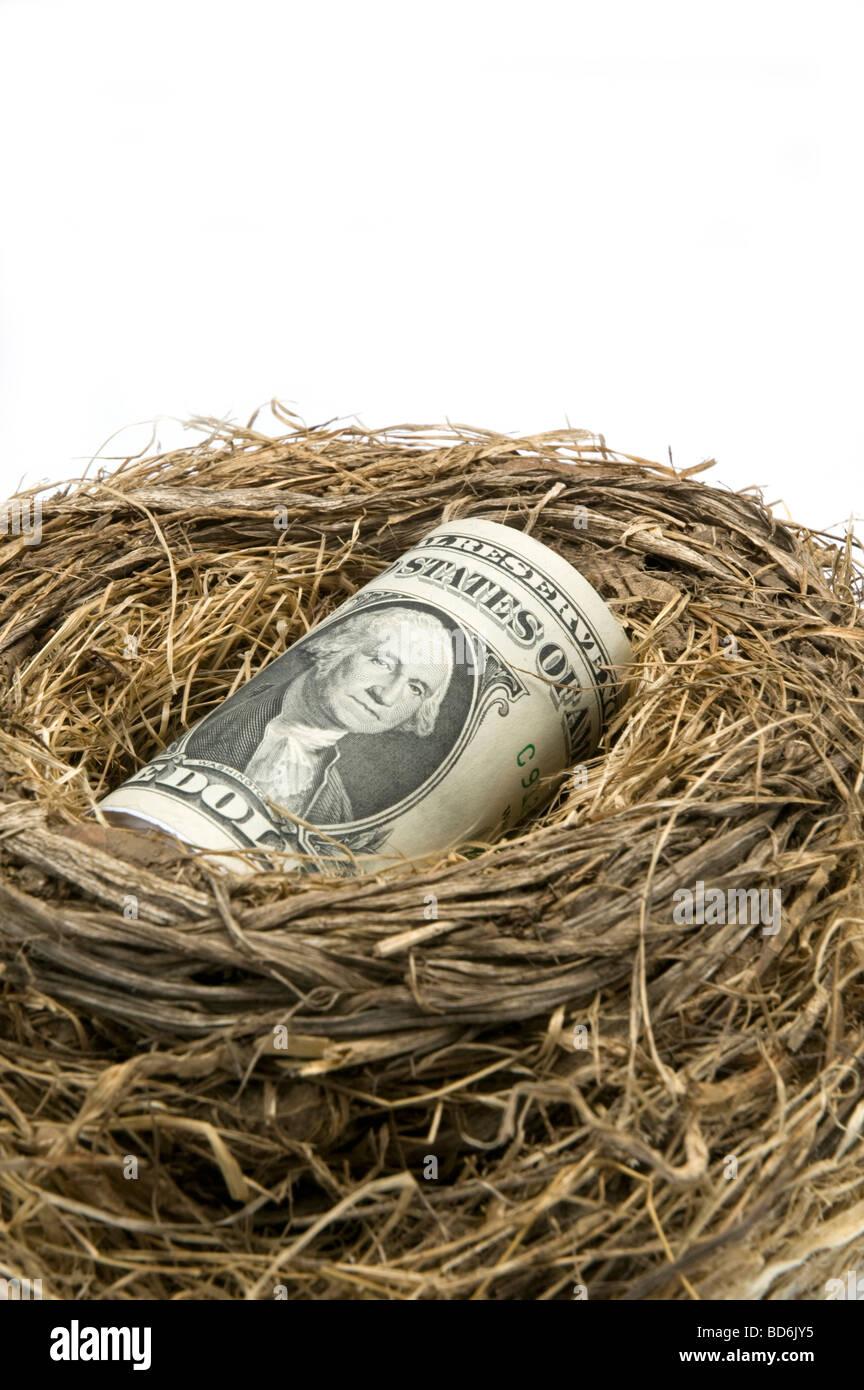 Roll of American one dollar bills in bird nest - Stock Image