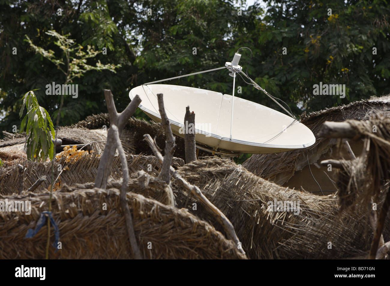 Thatched huts with satellite dish, northern Cameroon, Cameroon, Africa - Stock Image