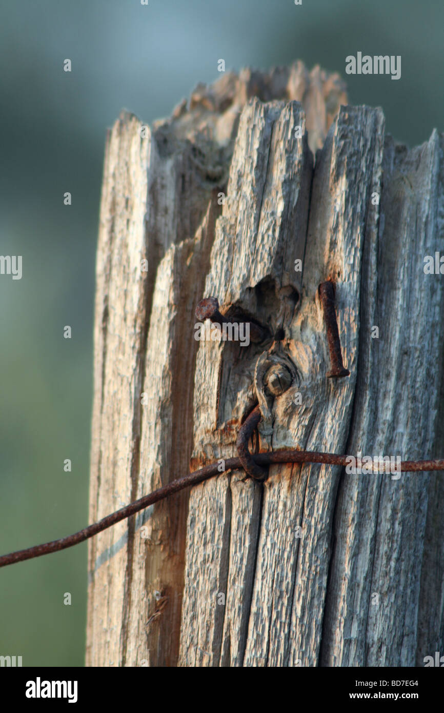 Ontario Farm Fence Post and Wire - Stock Image