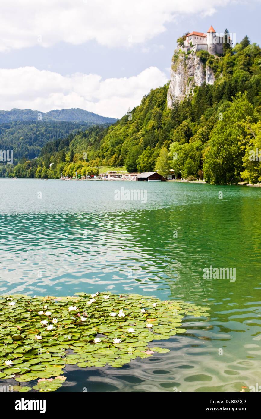 Lake Bled Slovenia - Stock Image
