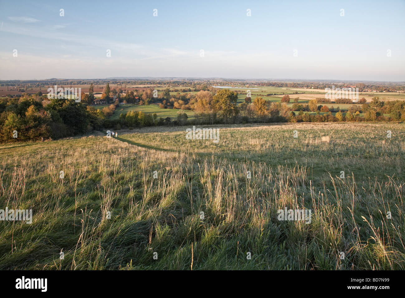 looking over Dorchester and the Thames Valley from Wittenham Clumps Oxfordshire England UK - Stock Image
