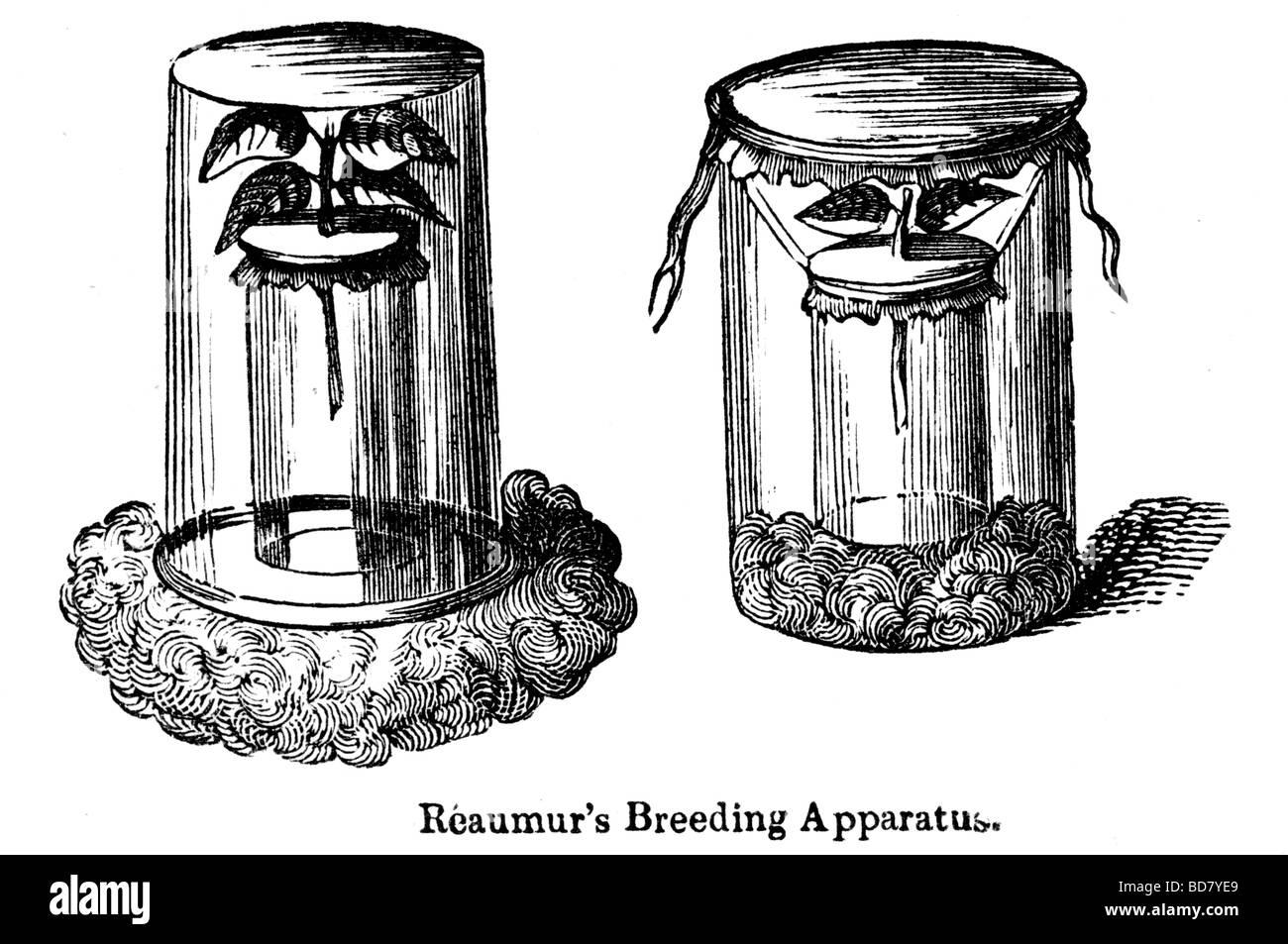 reaumur's breeding apparatus - Stock Image