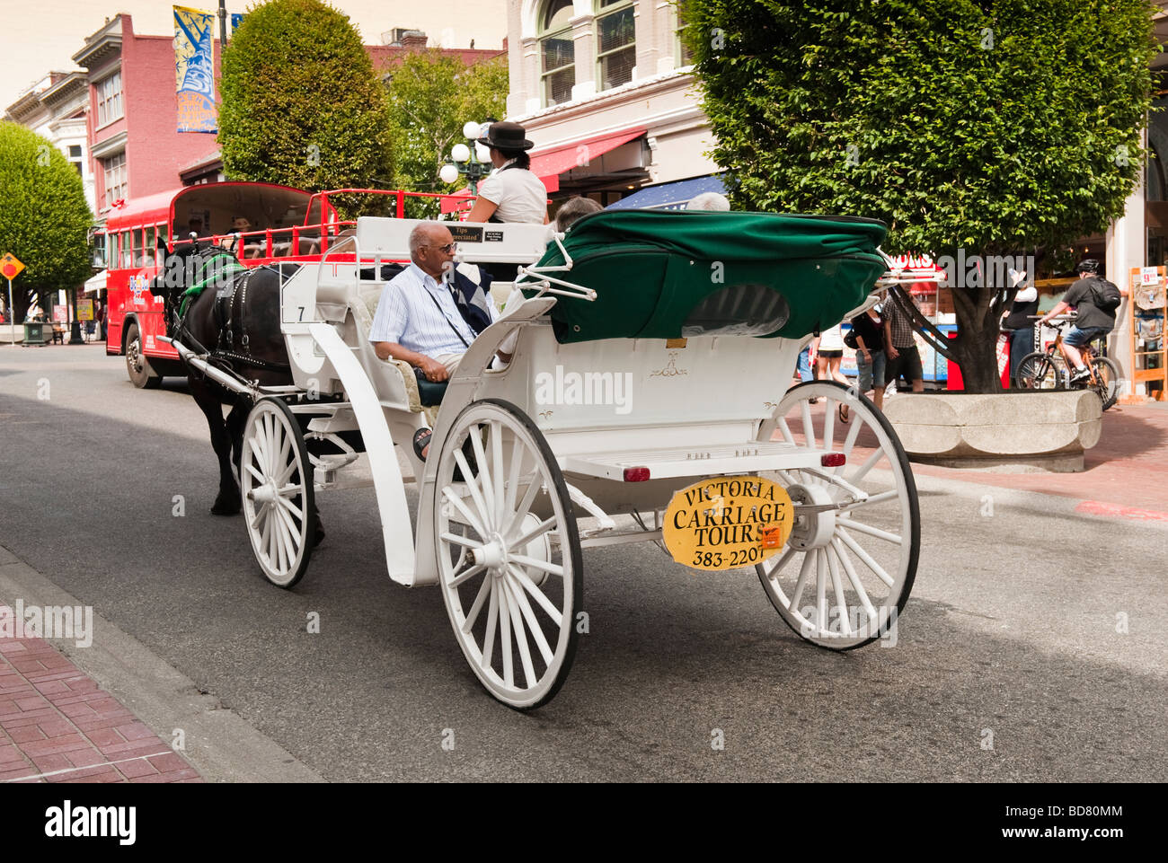 Tourists take a romantic and scenic horse and carriage ride through beautiful downtown Victoria, British Columbia, - Stock Image