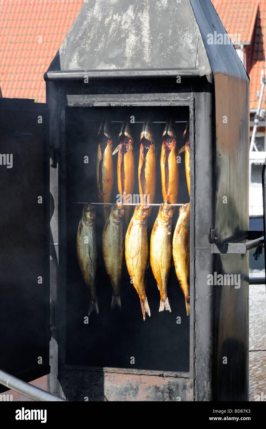 Räucherofen gesehen im Hafen von Wismar Deutschland Smoke oven seen at the Port of Wismar Germany Stock Photo