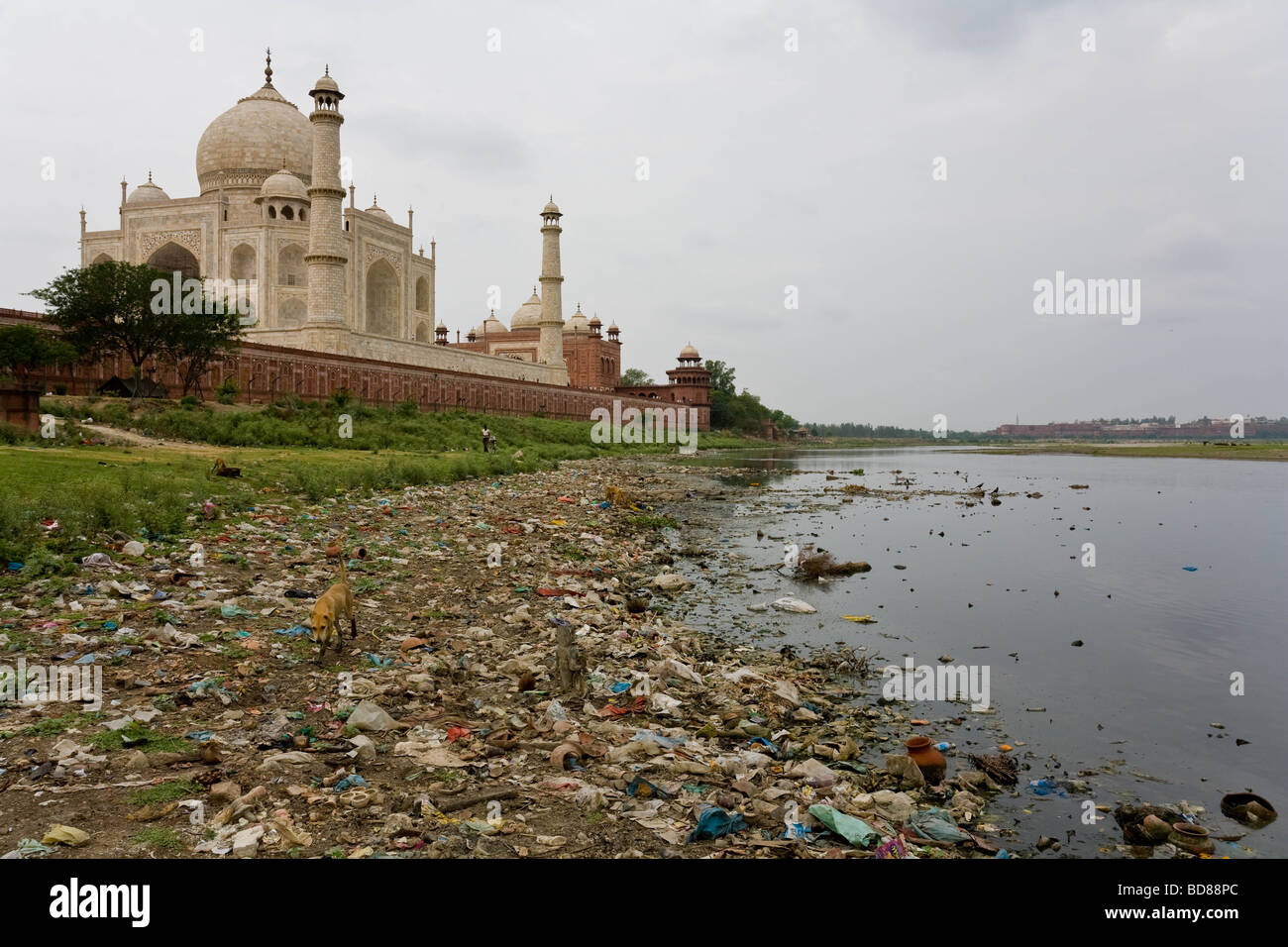 Pollution and waste line the river bank behind the Taj Mahal - Stock Image