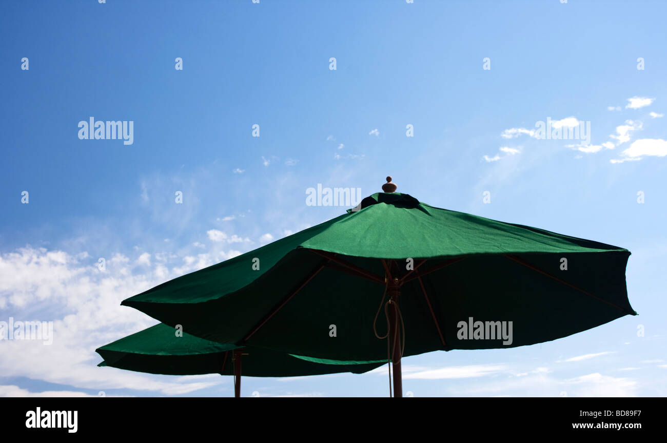Green Parasols Against a Blue Sky - Stock Image