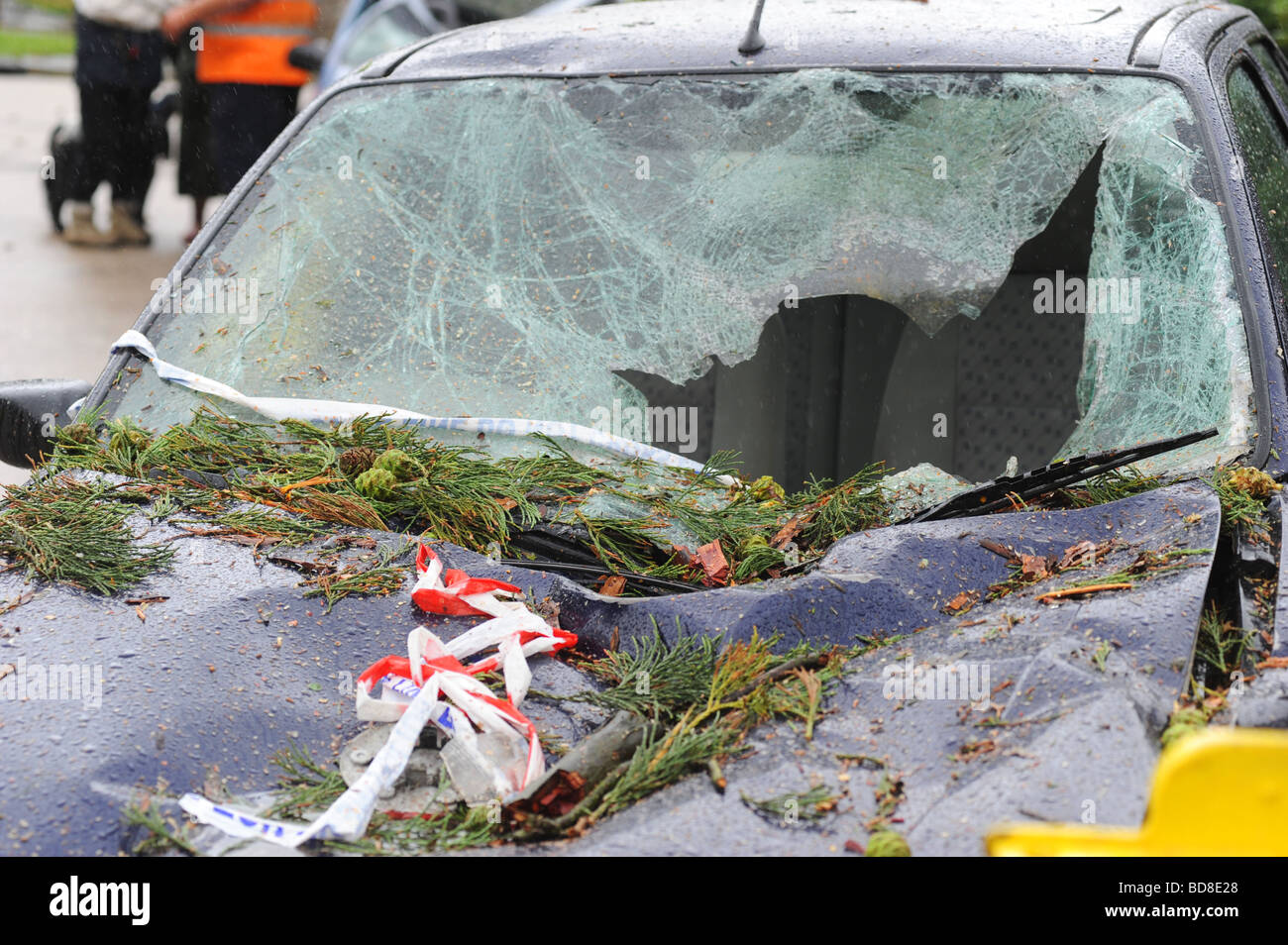 Damage done to a car after a tree fell on top of it after being struck by lightning during a severe summer storm Stock Photo