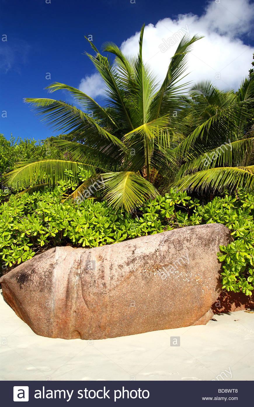 Boulder on the beach - Seychelles - Stock Image