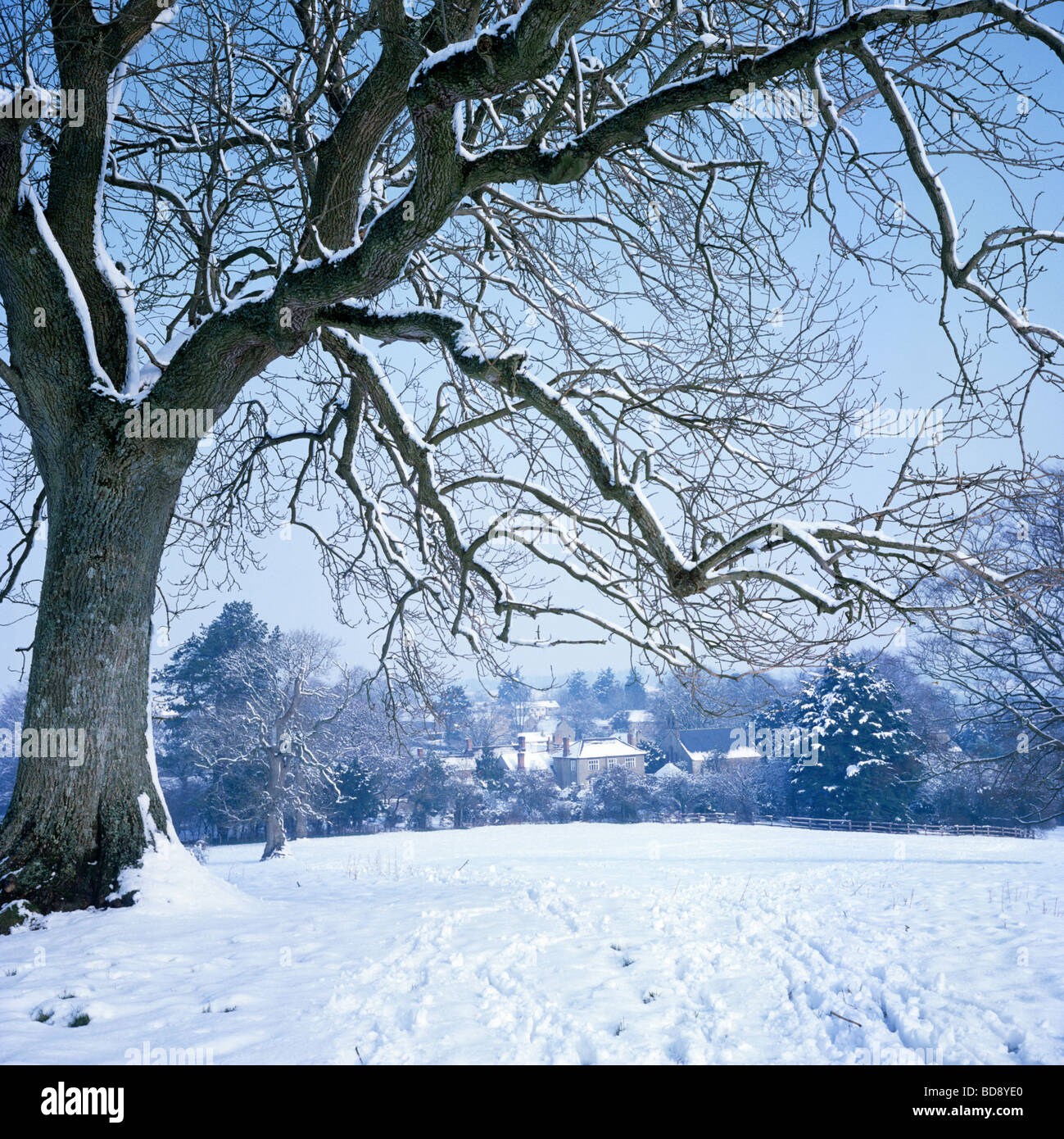 Snow covered rural scene at Misterton near Crewkerne Stock Photo