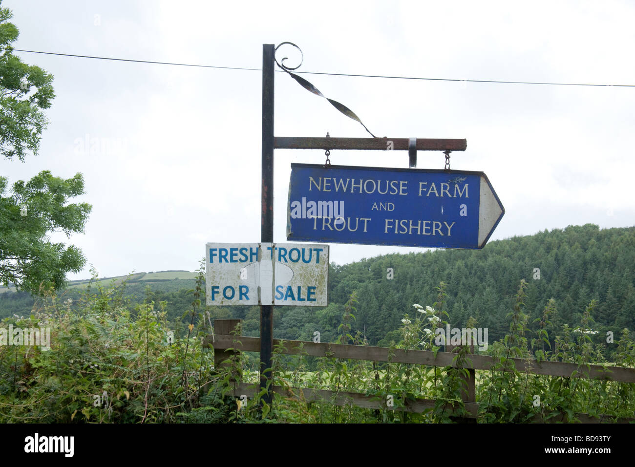 Sign for Newhouse farm trout Fisheries Devon England - Stock Image