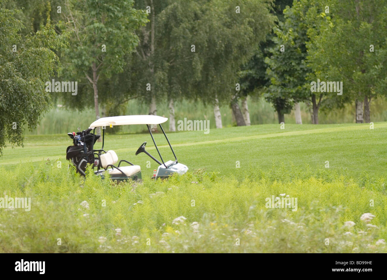 Golf Cart on the Fairway. Transportation - Stock Image