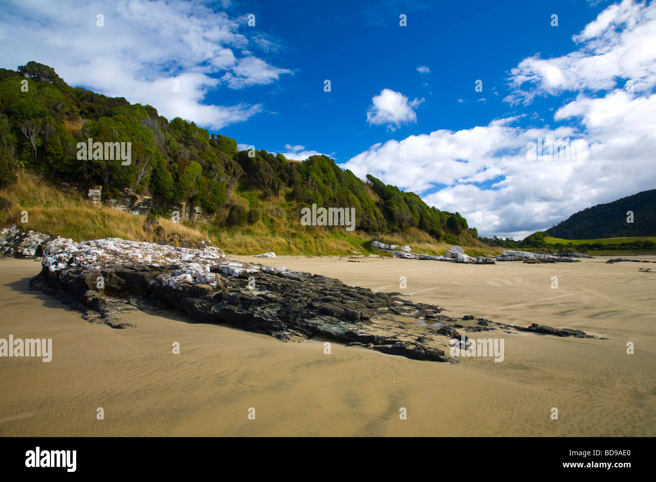 New Zealand Otago The Catlins Sandy beach and wind sculptured native bush of Purakaunui Bay Stock Photo