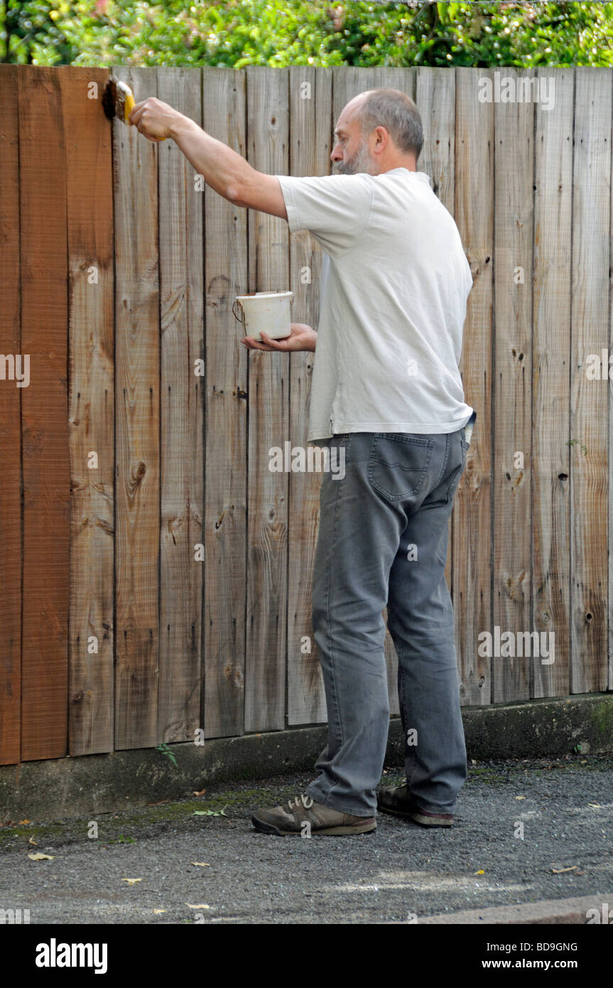 Left handed man painting fence - Stock Image