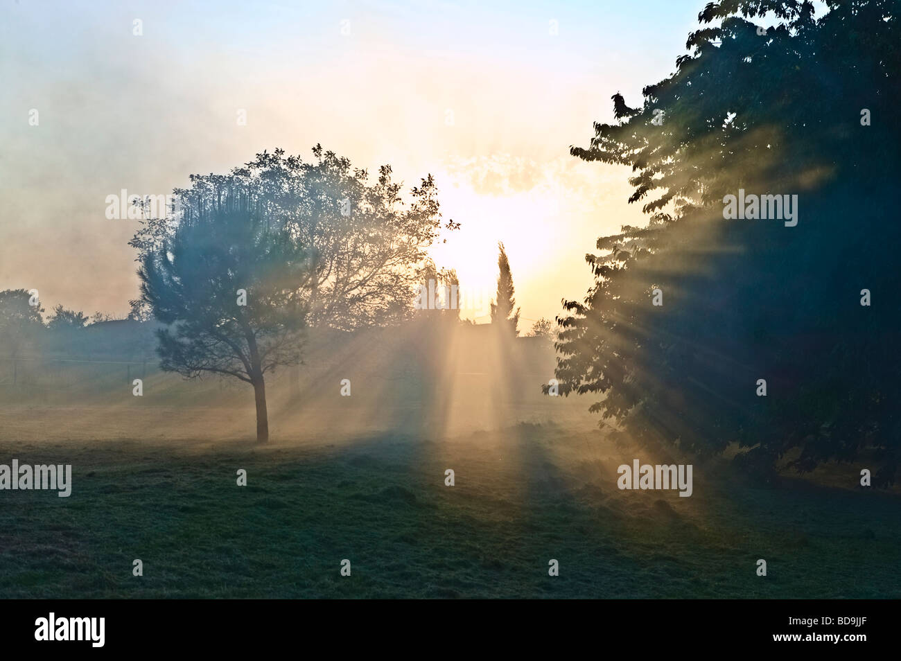 misty landscape in dramatic light - Stock Image