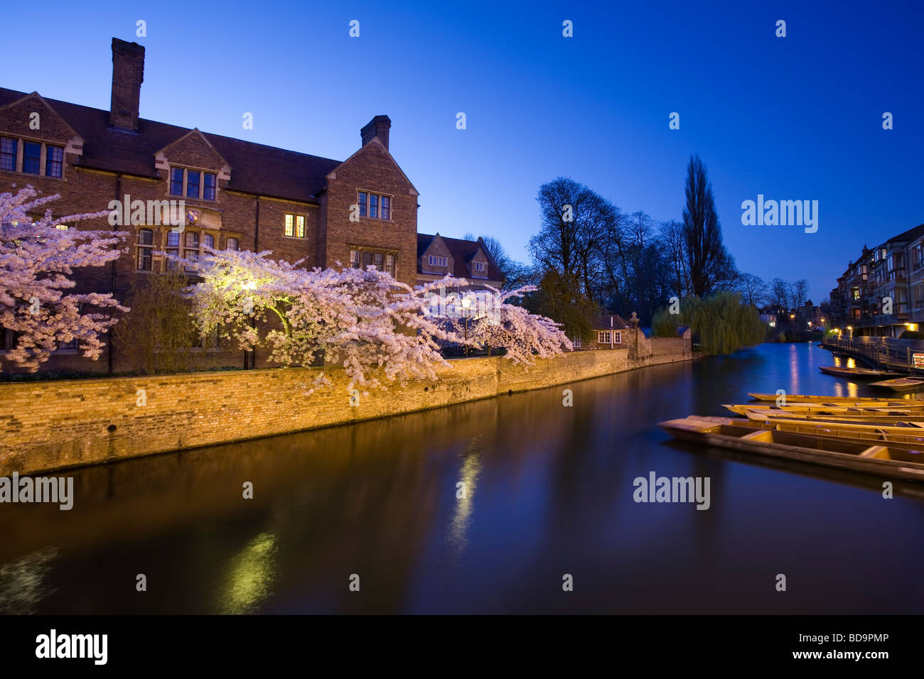 Magdelene College, Cambridge, at night with cherry blossom. - Stock Image
