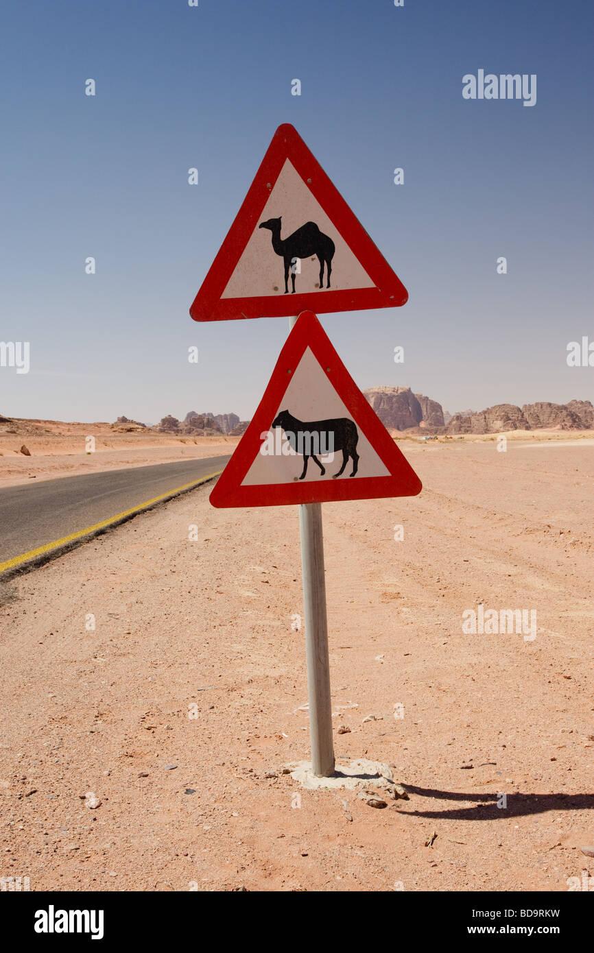 camel & sheep warning signs, Wadi Rum, Jordan - Stock Image