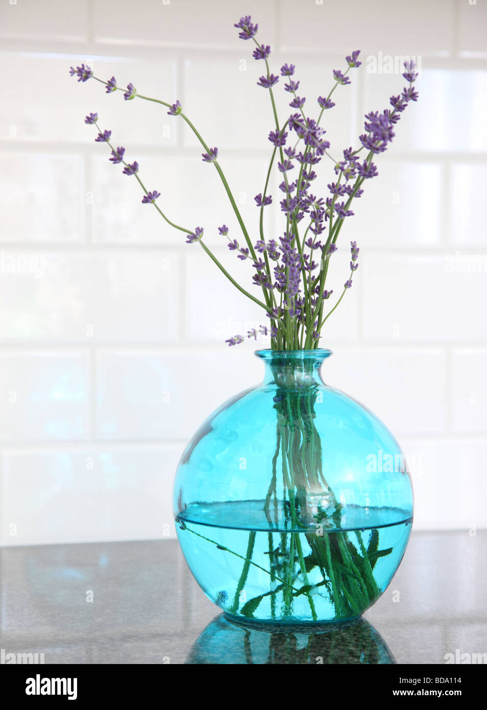 Lavender in blue glass vase - Stock Image