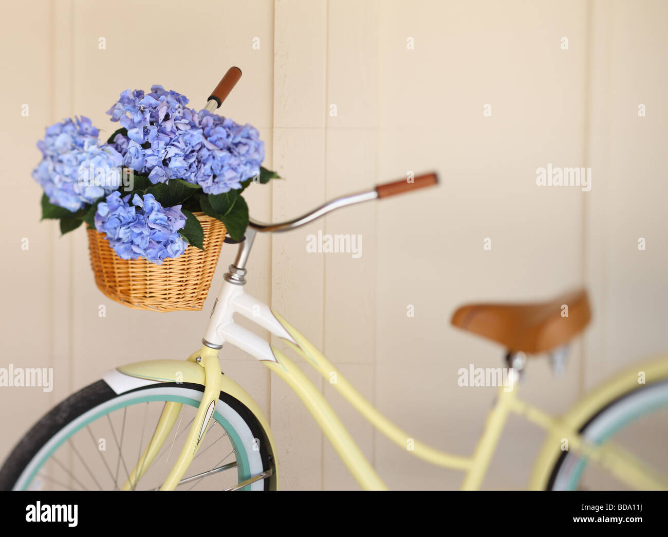 Bicycle with flowers in basket - Stock Image