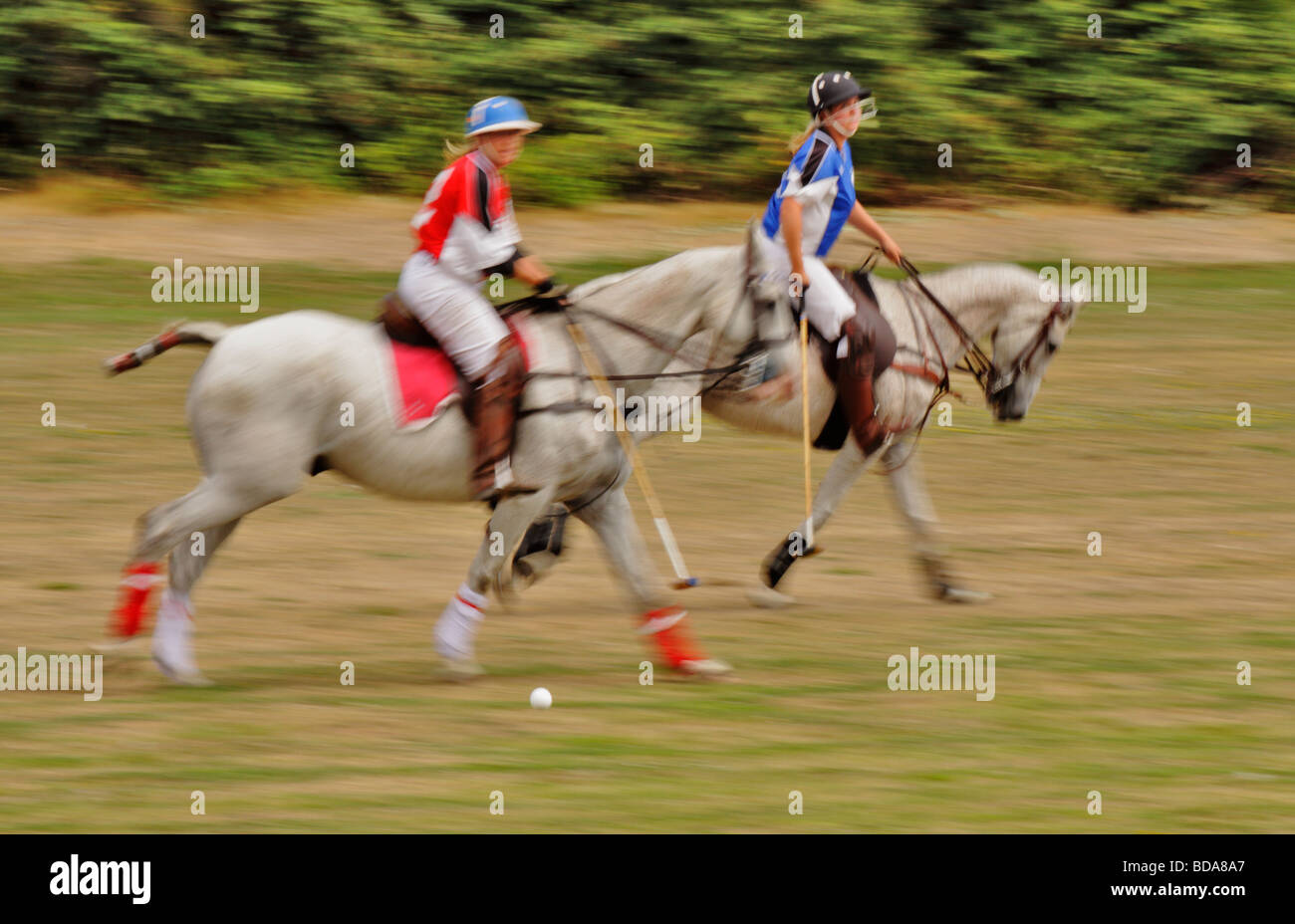 Action during polo match Victoria British Columbia Canada - Stock Image