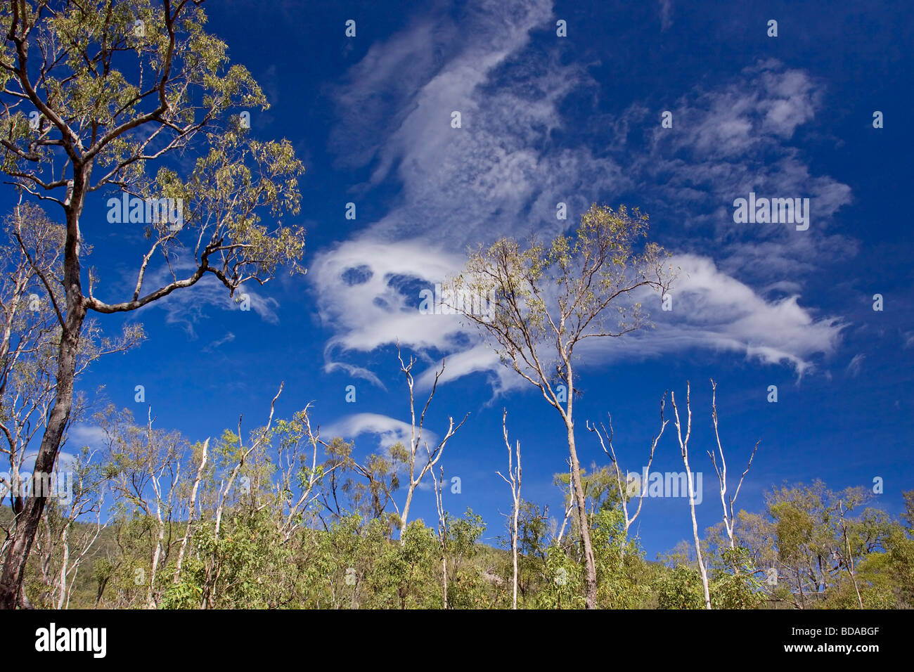 Ghost cloud - Stock Image