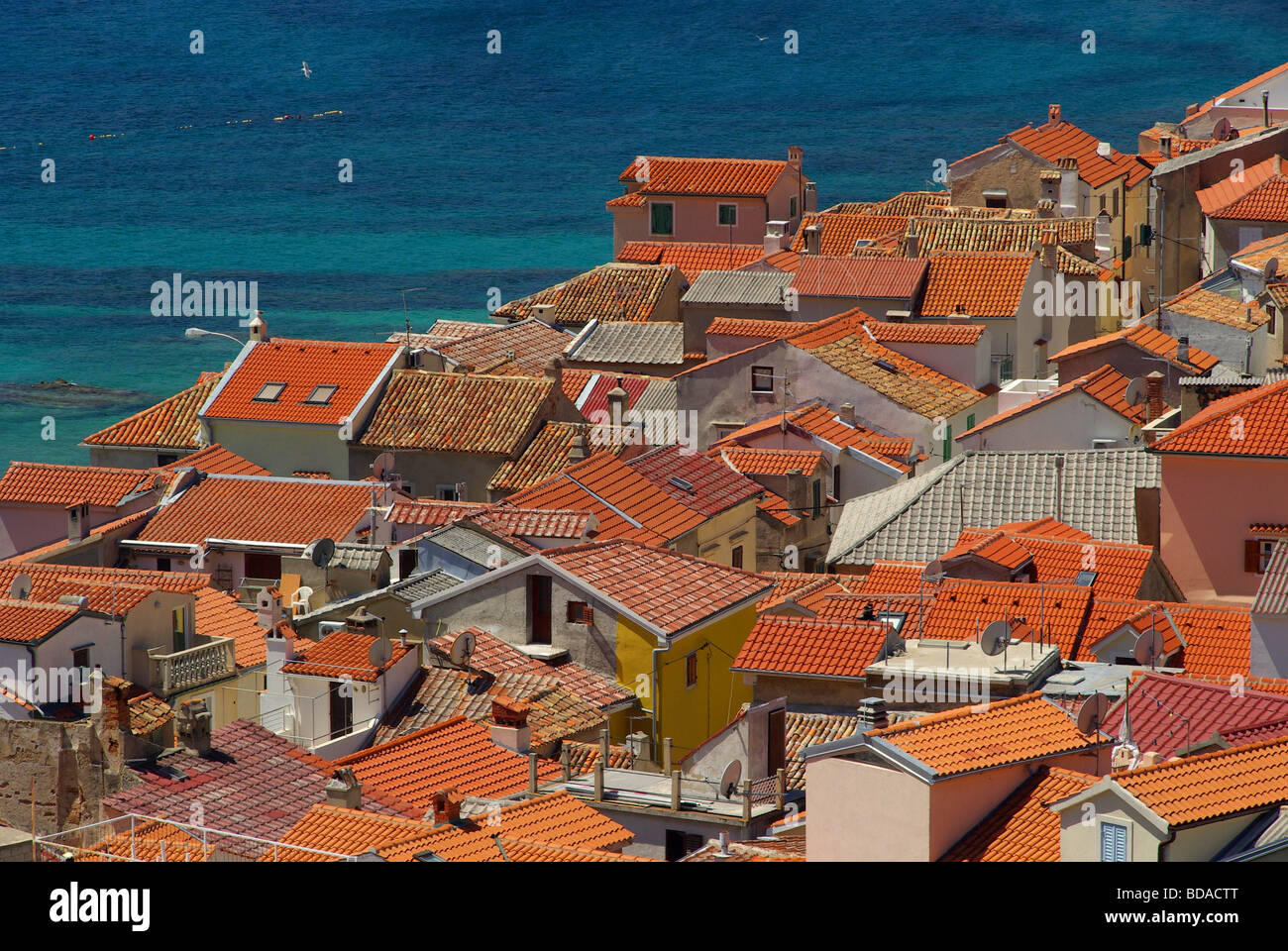 Baska 04 - Stock Image