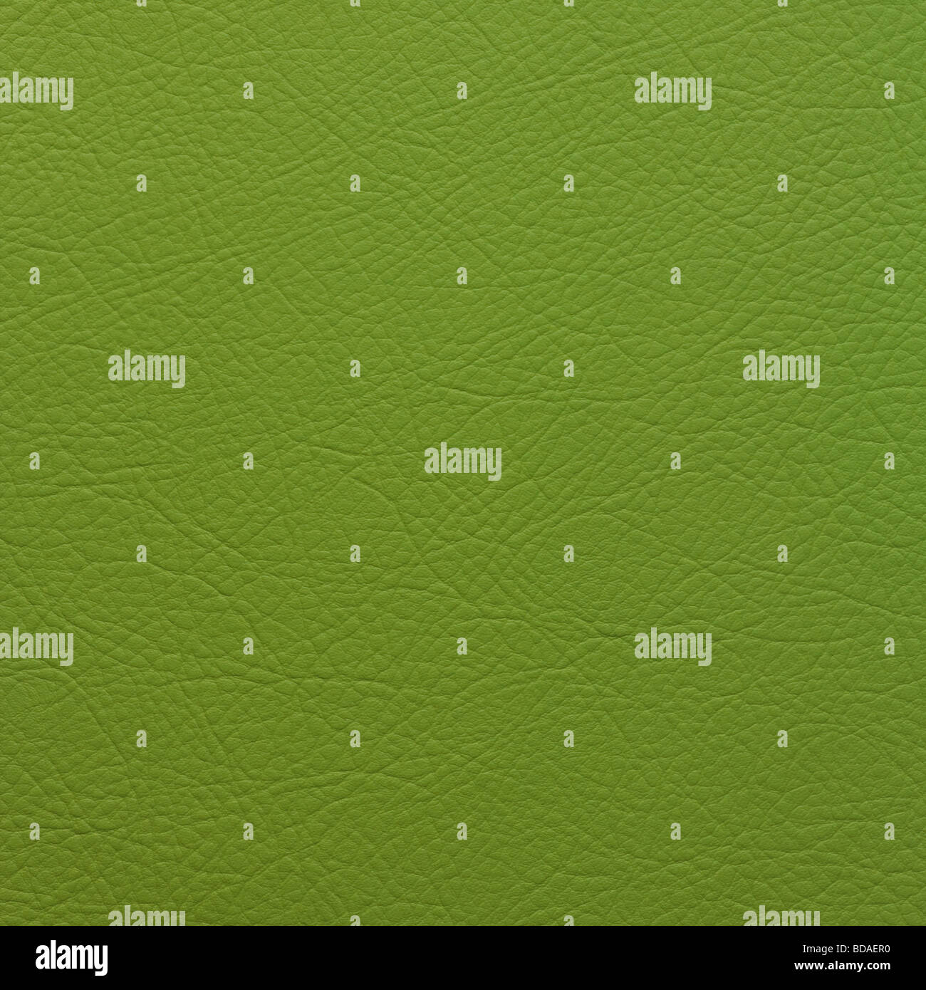GREEN LEATHER BACKGROUND - Stock Image