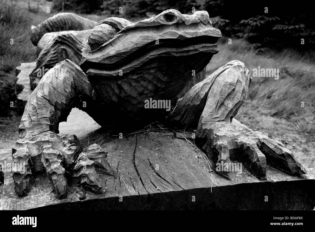 lizard carving, beacon fell - Stock Image