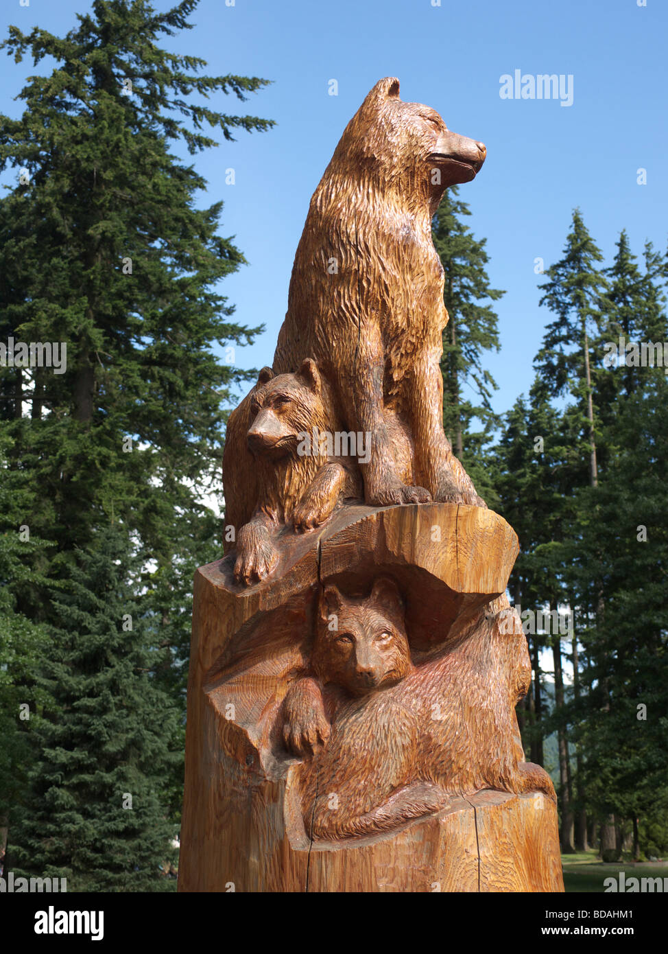 Chainsaw sculptures of wolves on the main street in hope in british