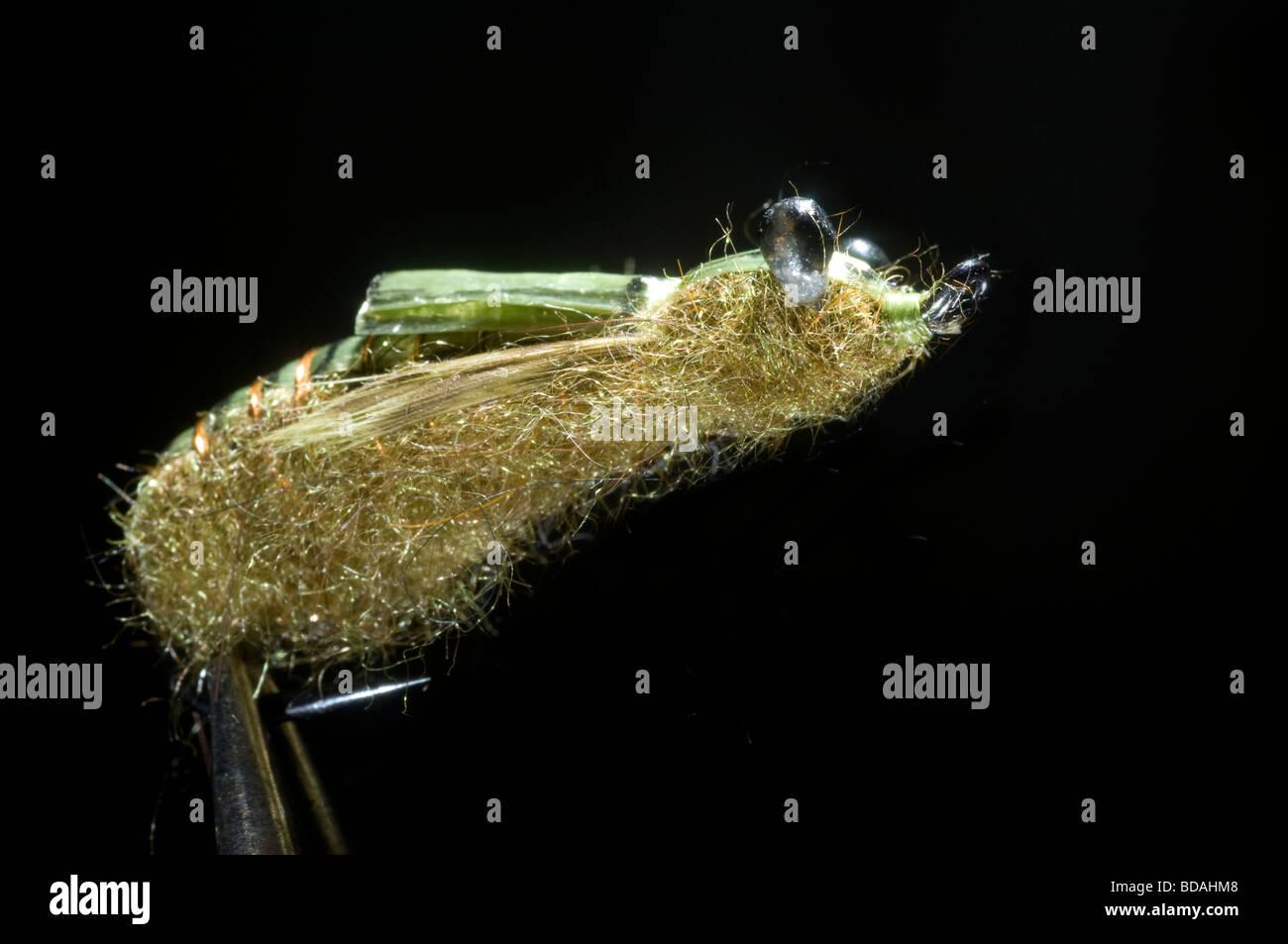 Fresh water fishing fly Stock Photo