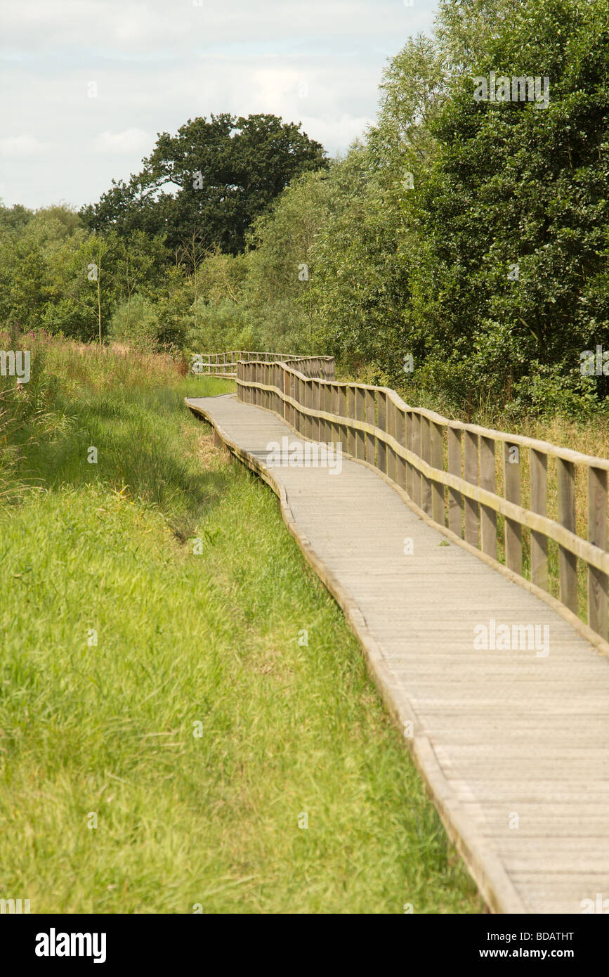 Wooden Walkway Over Soft Ground On Public Nature Reserve Stock Photo