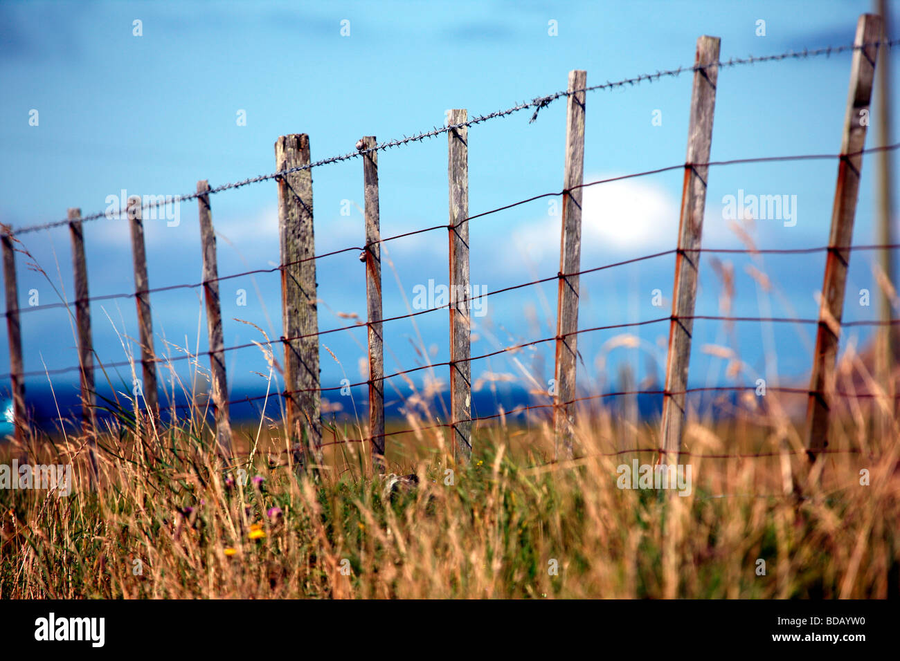 Agricultural Fencing Stock Photos & Agricultural Fencing Stock ...