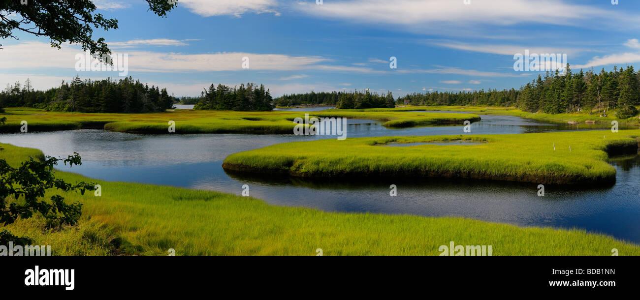 Panorama of tide pool water with green salt marsh cordgrass on Cape Sable Island Nova Scotia - Stock Image