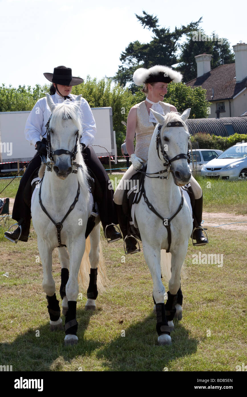 Two Lusitano horses doing a dressage demonstration at Hay on Wye Literary Festival - Stock Image