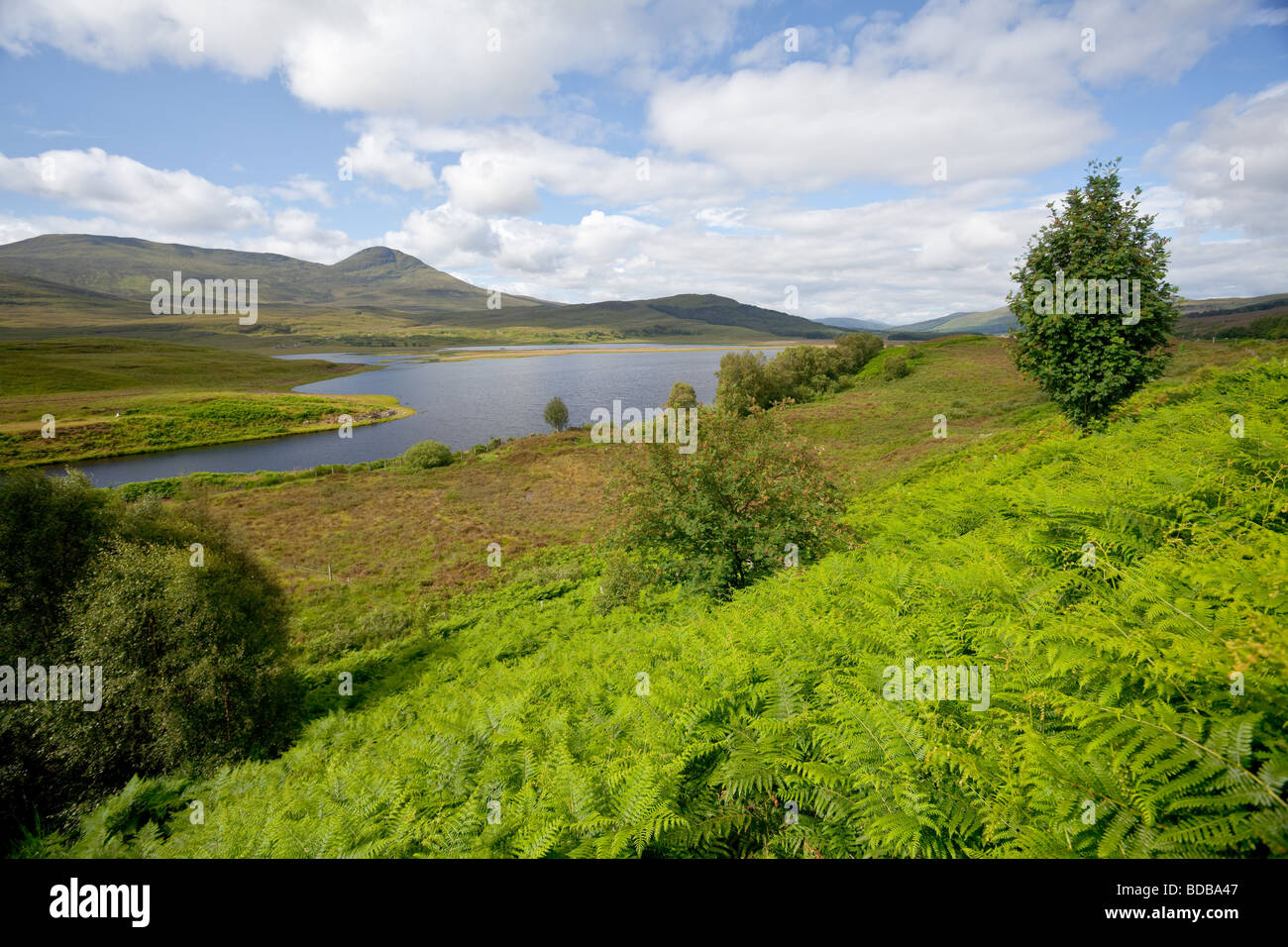Loch Luichart in the Highlands of Scotland - Stock Image