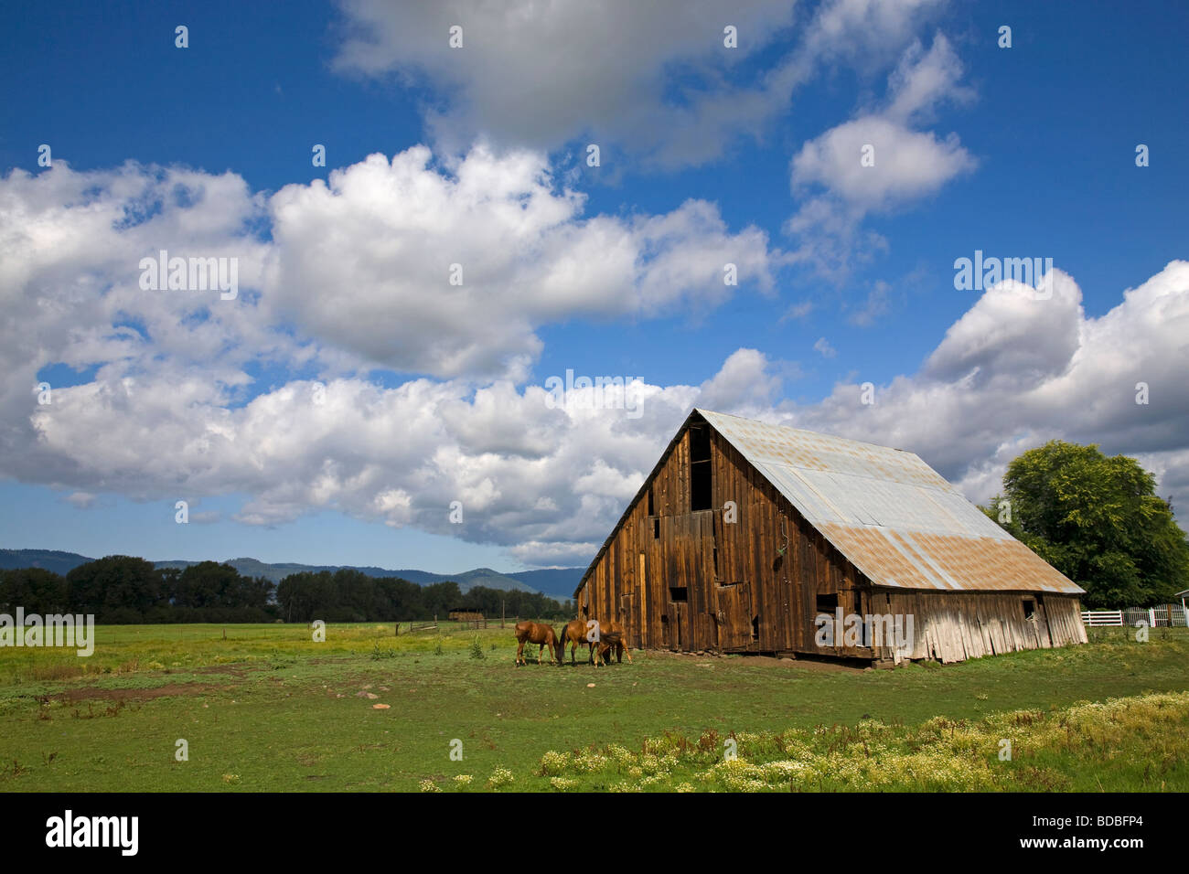 An old barn and wooden fence on a ranch near Halfway Oregon on the slopes of the Wallowa Mountains in eastern Oregon - Stock Image
