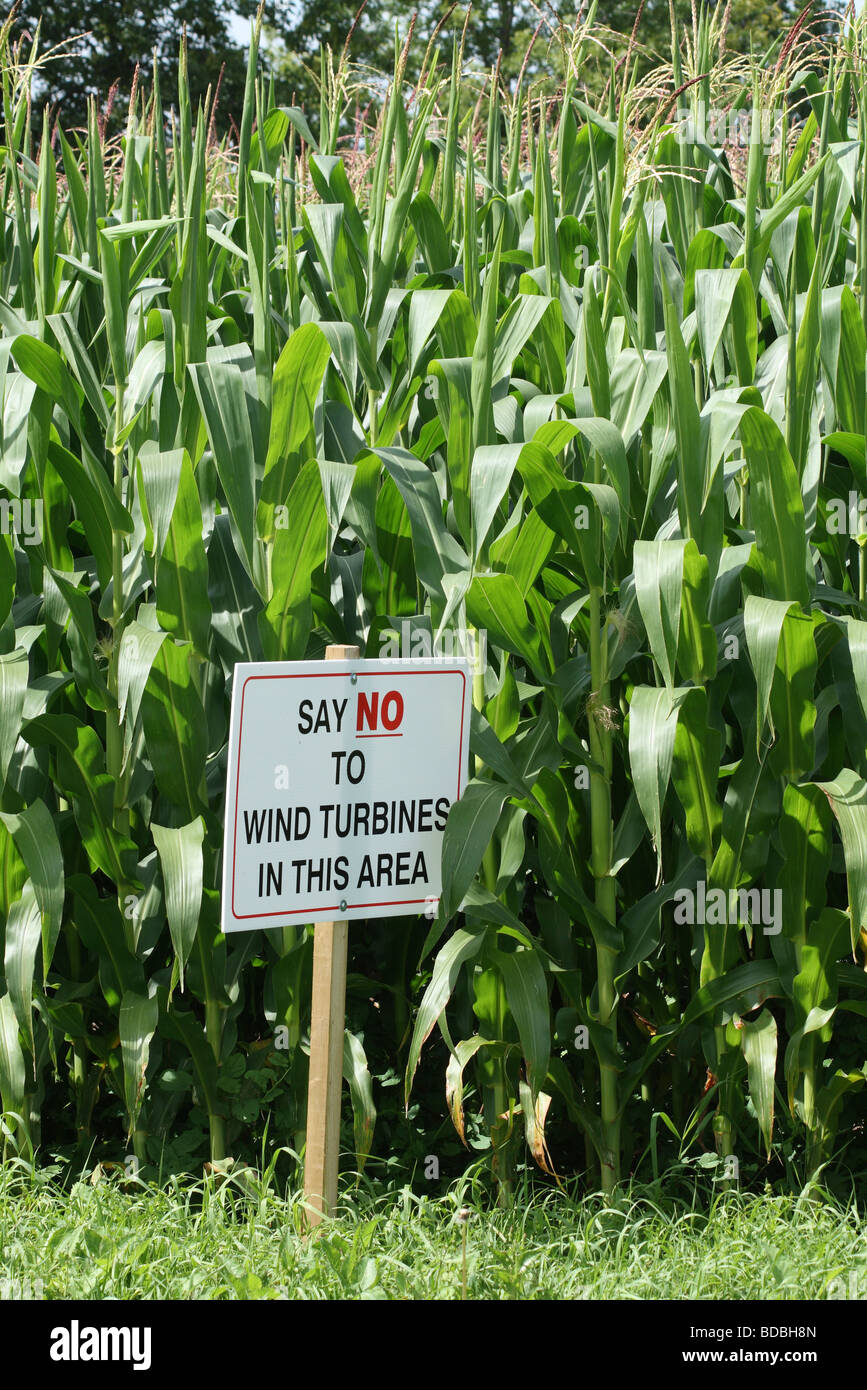 Say No to Wind Turbines in this Area Sign next to Southwestern Ontario Corn Field - Stock Image