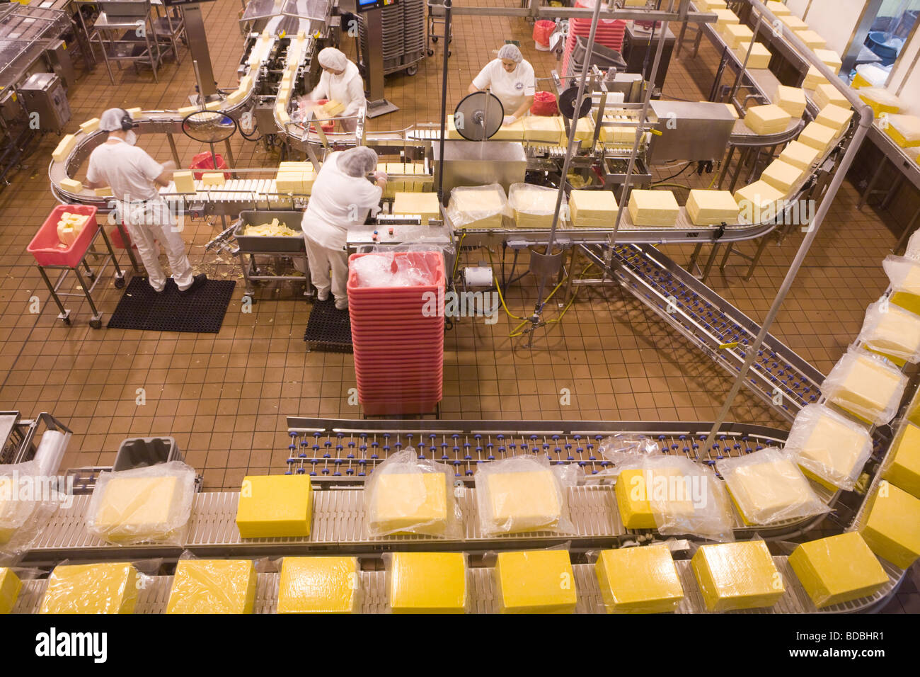 Women on the production line making cheddar cheese at Tillamook Cheese factory in Tillamook Oregon - Stock Image