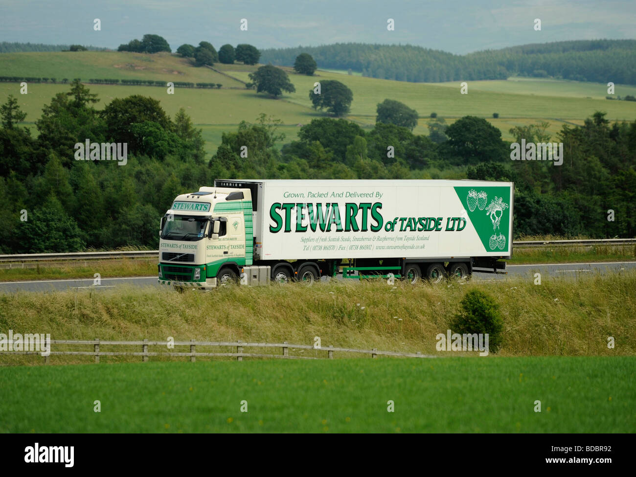 Volvo FH truck with refrigerated trailer Stewarts of Tayside - Stock Image