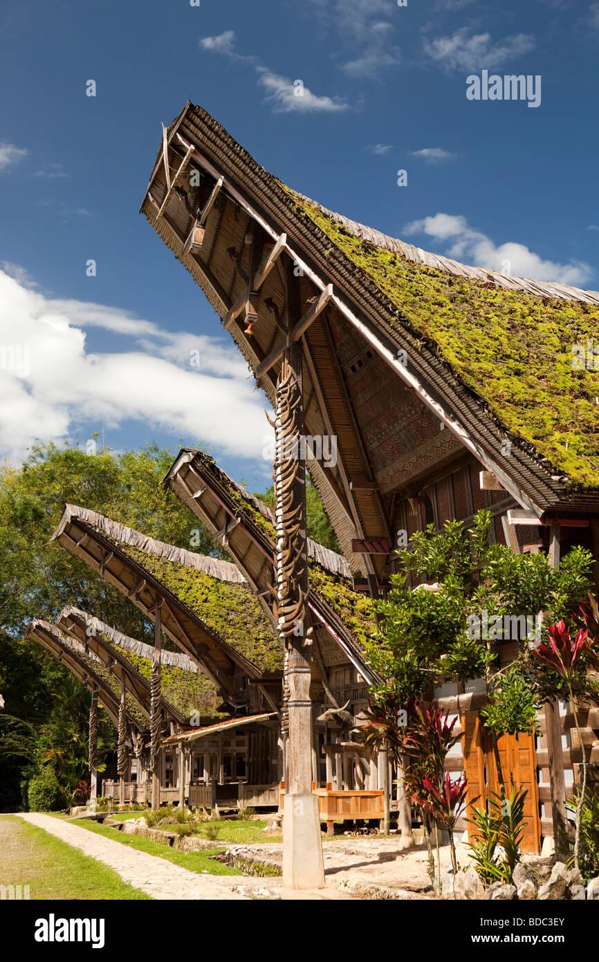 Indonesia, Sulawesi, Tana Toraja, Kete Kesu village, traditional high status tongkonan houses with many buffalo - Stock Image
