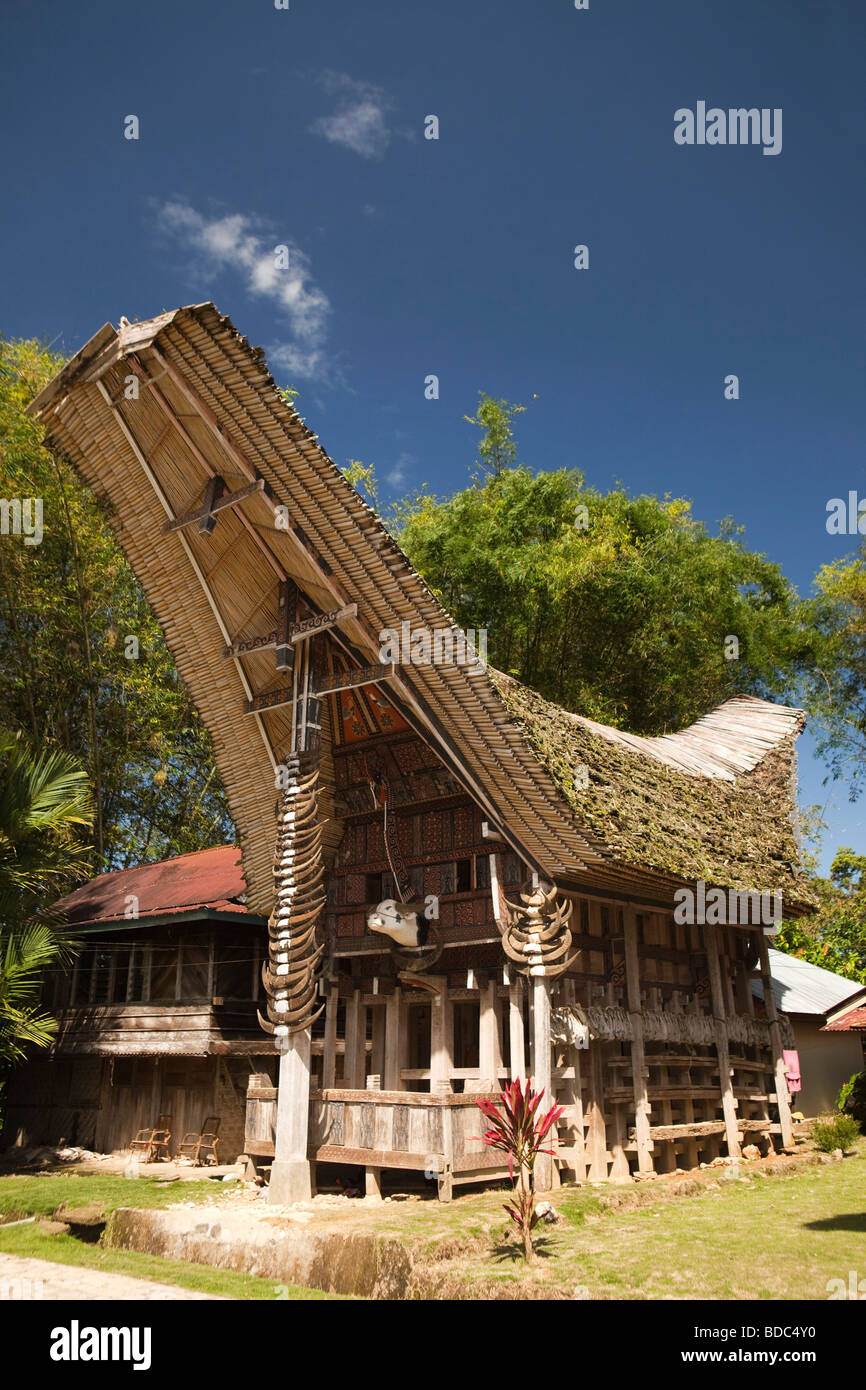 Indonesia Sulawesi Tana Toraja Kete Kesu village traditional high status tongkonan house with many buffalo horns - Stock Image