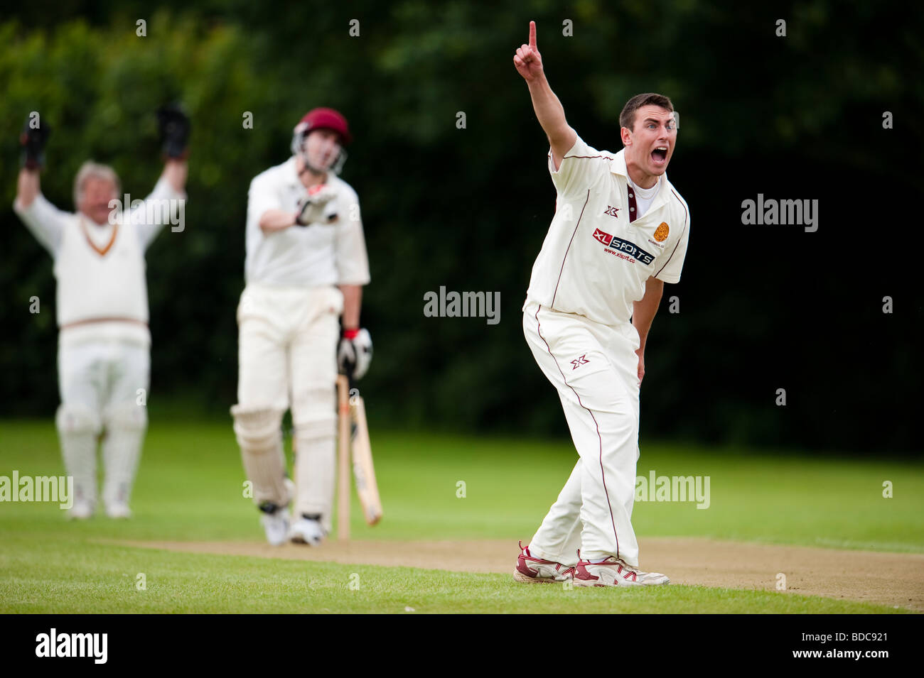 Bowler appealing leg before wicket - Stock Image
