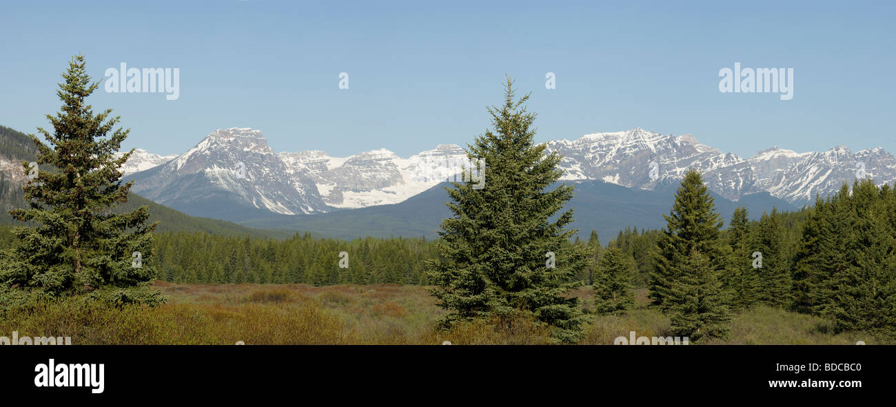 Massive Range from Bow Valley Parkway Panoramic Banff National Park Alberta, Canada LA004005 - Stock Image