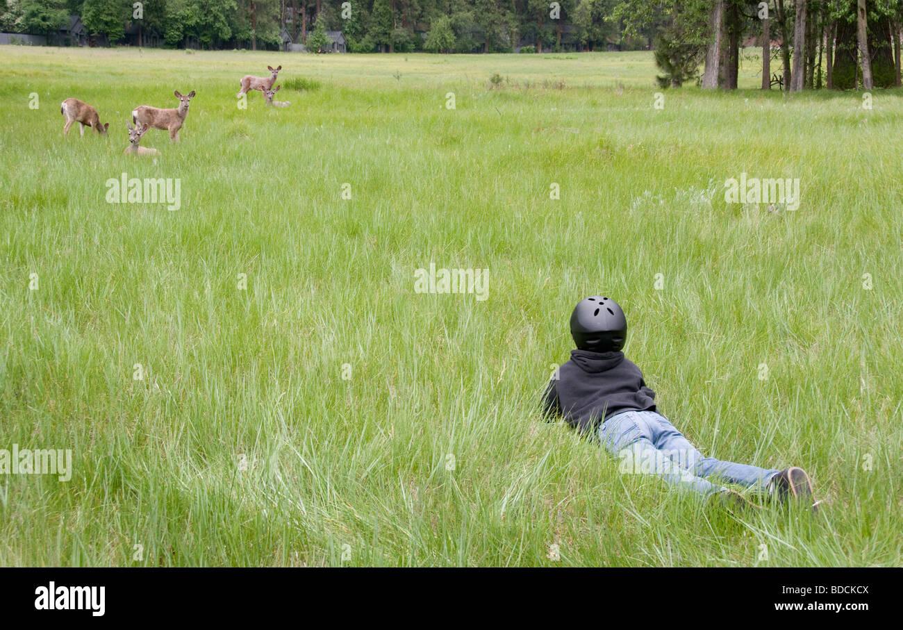 grasslands national park stock photos  u0026 grasslands