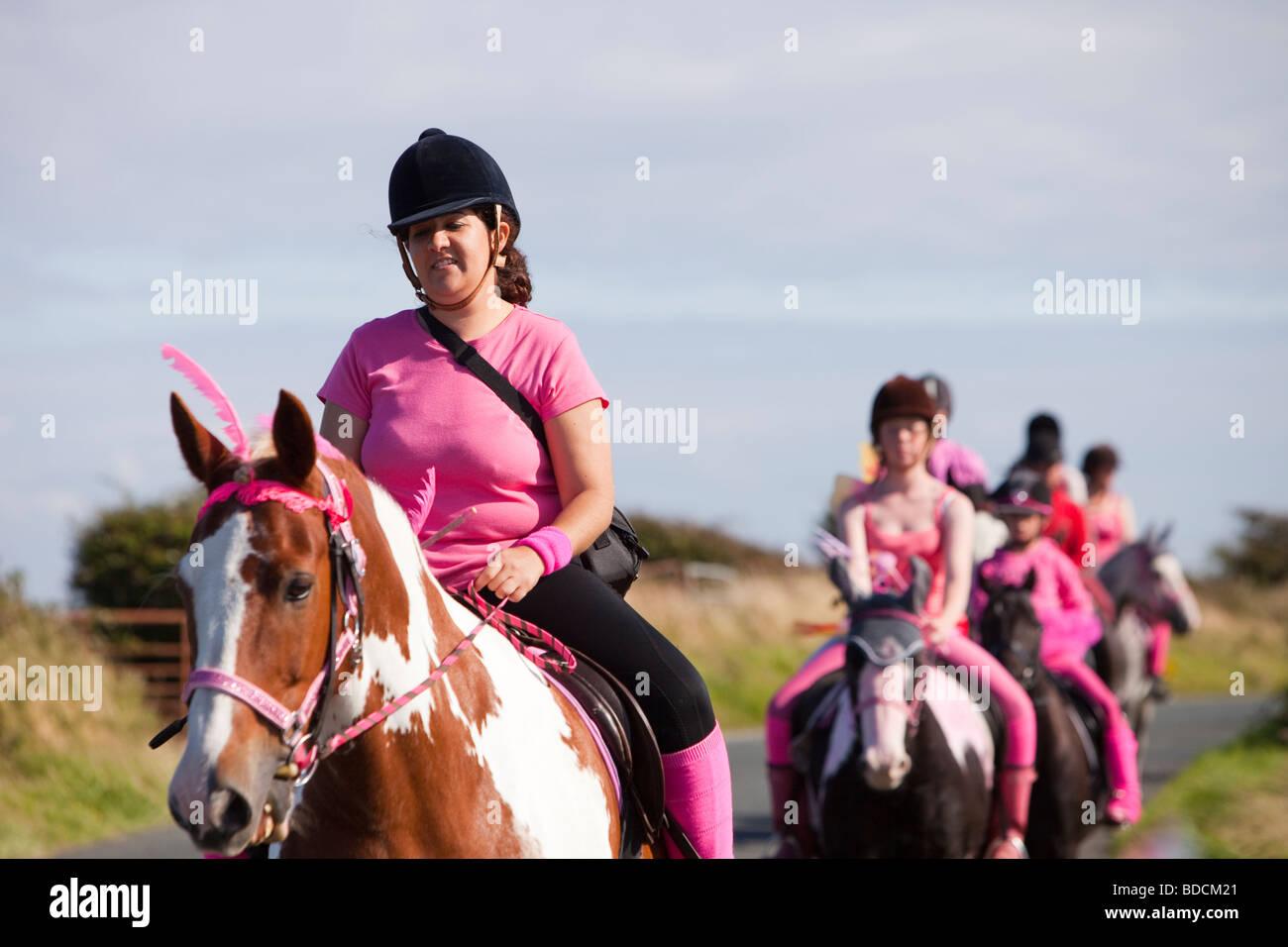 A horse riding school on Walney Island Barrow in Furness Cumbria UK - Stock Image